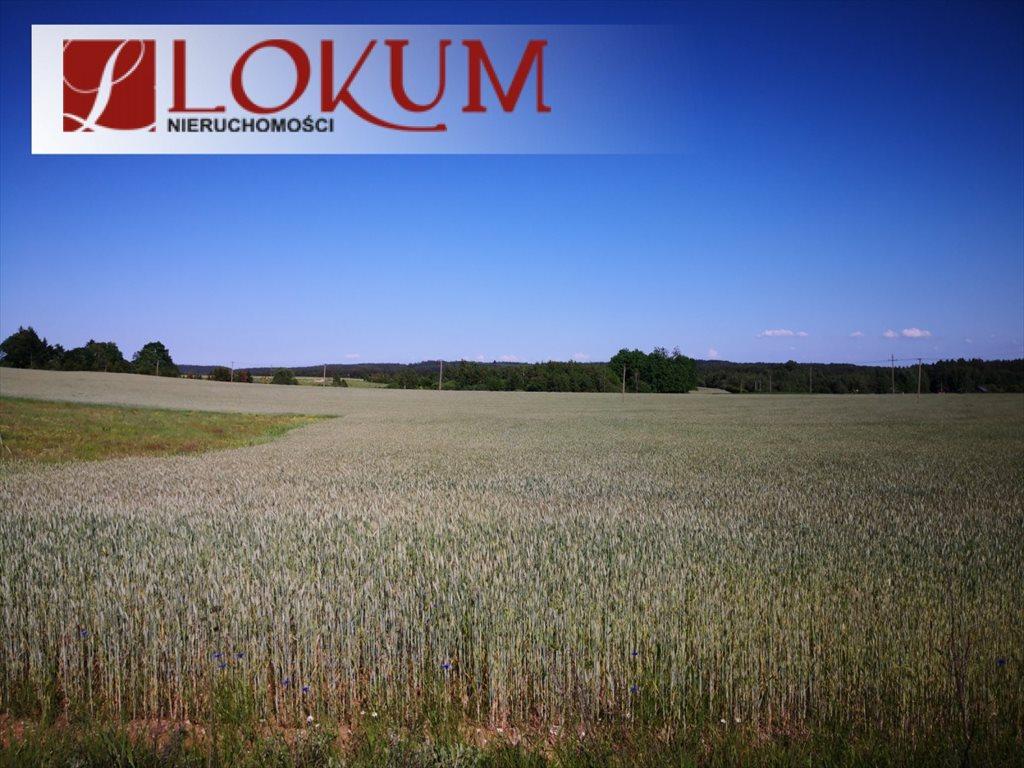 Działka rolna na sprzedaż Nowy Wiec  72525m2 Foto 6