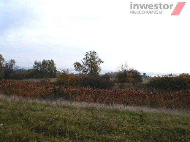 Działka rolna na sprzedaż Szczecin, Bukowo  5293m2 Foto 7