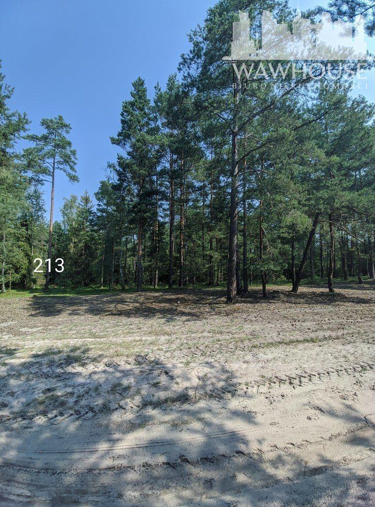 Działka leśna na sprzedaż Czernice  23500m2 Foto 11