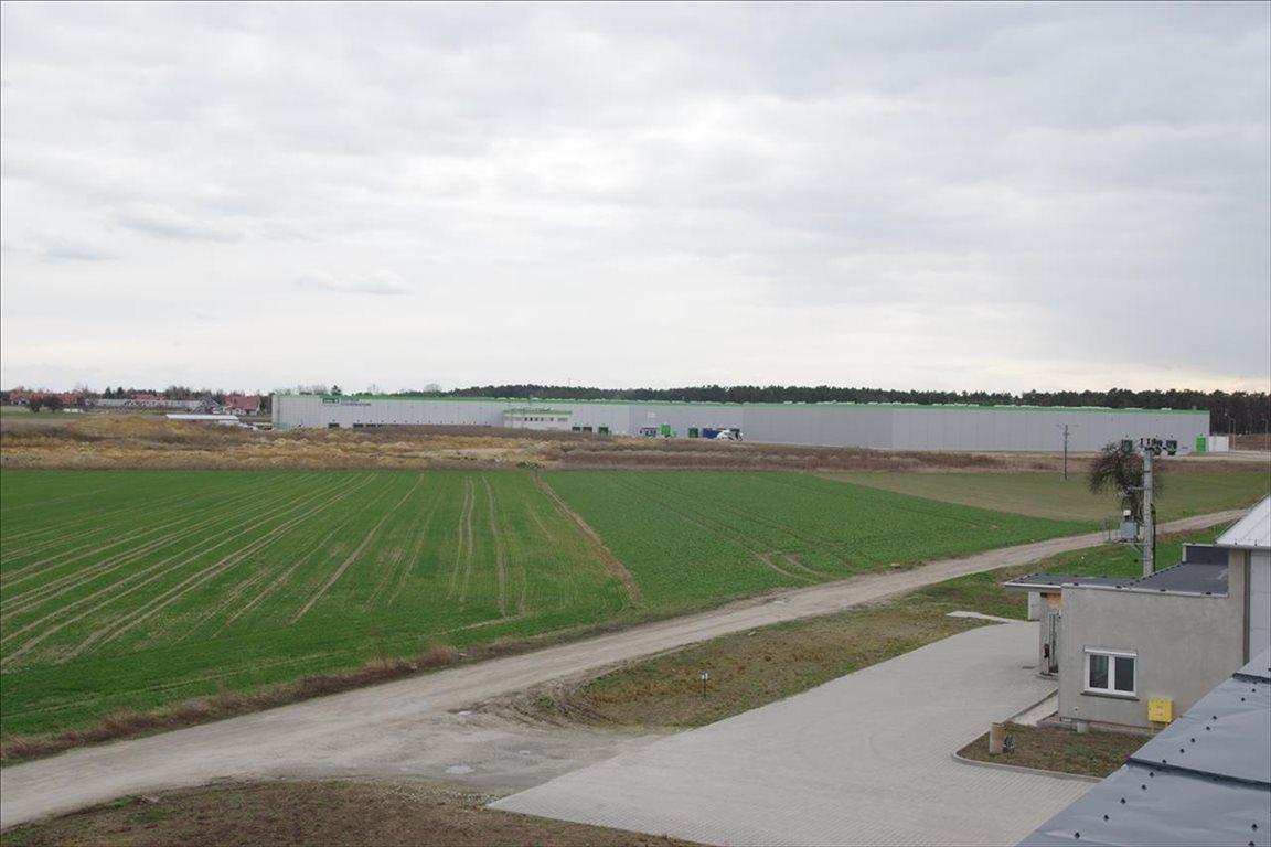 Działka rolna na sprzedaż Stary Mirków, Długołęka  4000m2 Foto 3