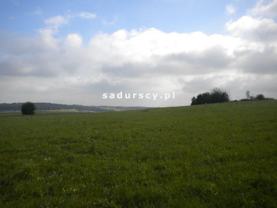 Działka rolna na sprzedaż Gołyszyn  28520m2 Foto 6