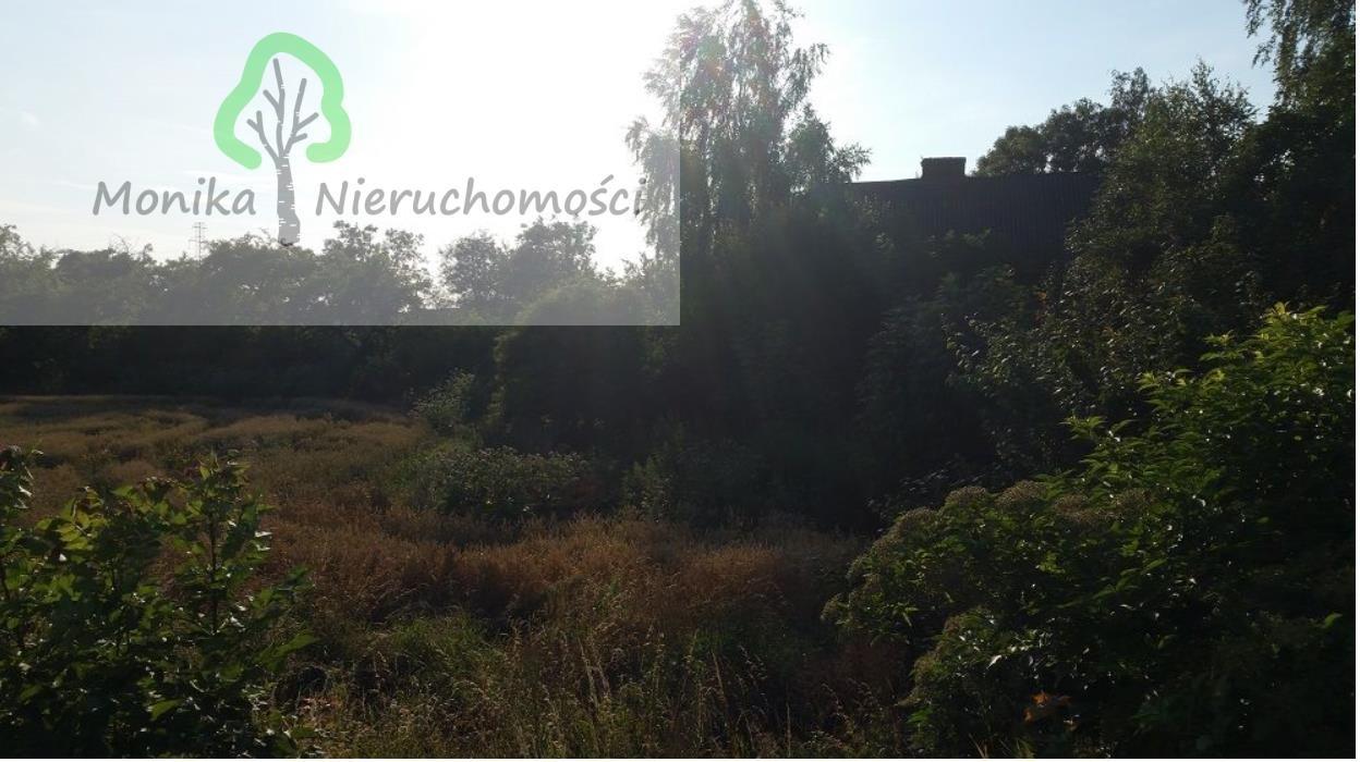 Działka budowlana na sprzedaż Tczew, Czatkowska  12999m2 Foto 7