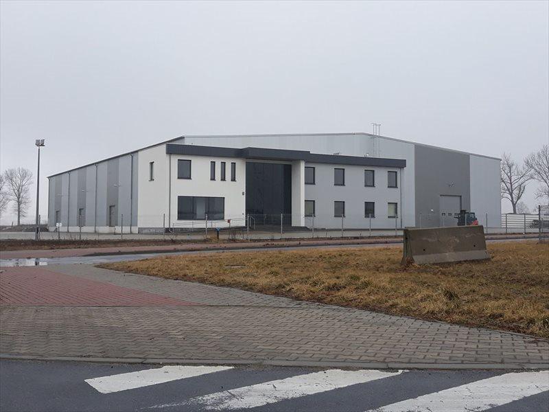 Lokal użytkowy na wynajem Poznań, Grunwald  3900m2 Foto 1