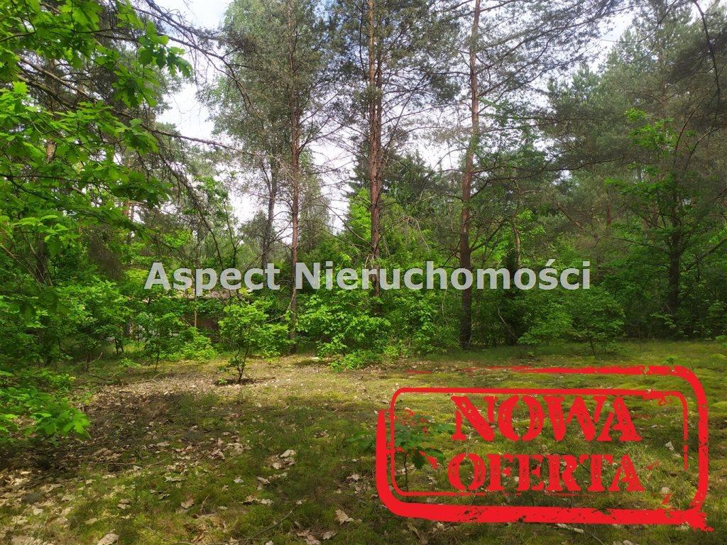 Działka rekreacyjna na sprzedaż Łochów, Jerzyska  1400m2 Foto 2