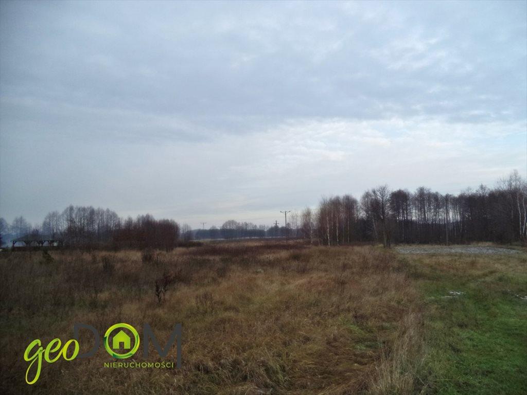 Działka rolna na sprzedaż Terespol  21544m2 Foto 2