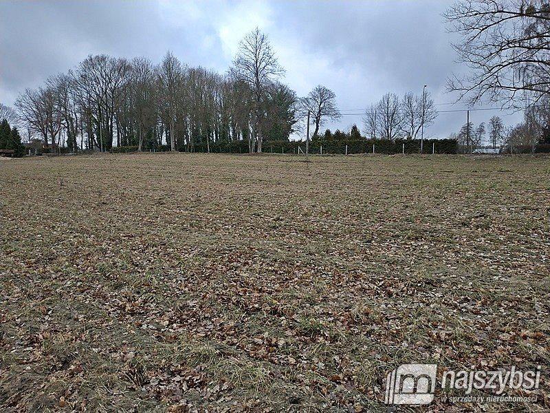 Działka rolna na sprzedaż Nętno, Wieś  2000m2 Foto 5