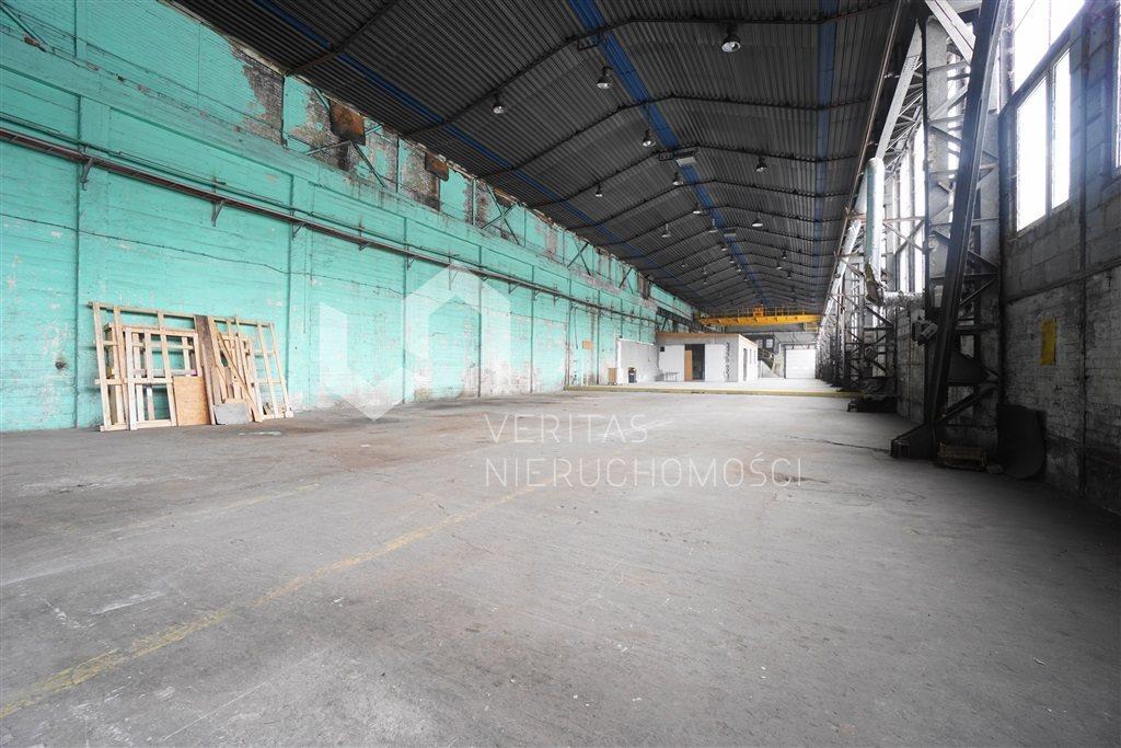 Lokal użytkowy na wynajem Sosnowiec  1240m2 Foto 6