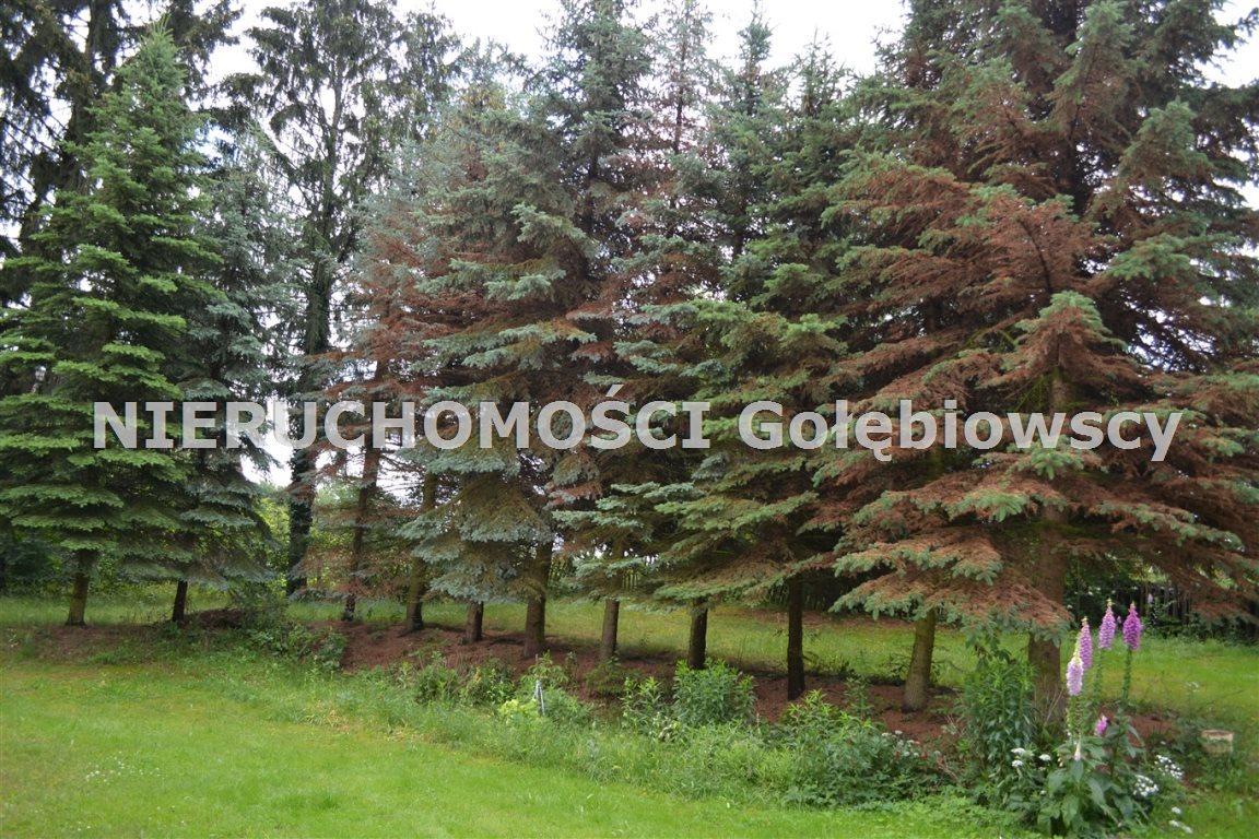Dom na sprzedaż Białogórze  170m2 Foto 12