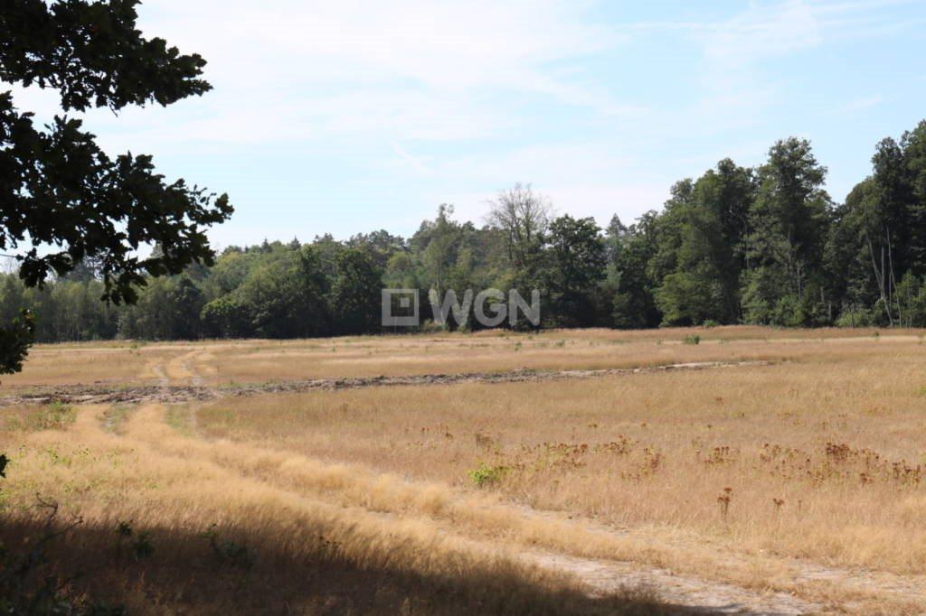 Działka rolna na sprzedaż Grzepnica, Grzepnica, Grzepnica  10800m2 Foto 1