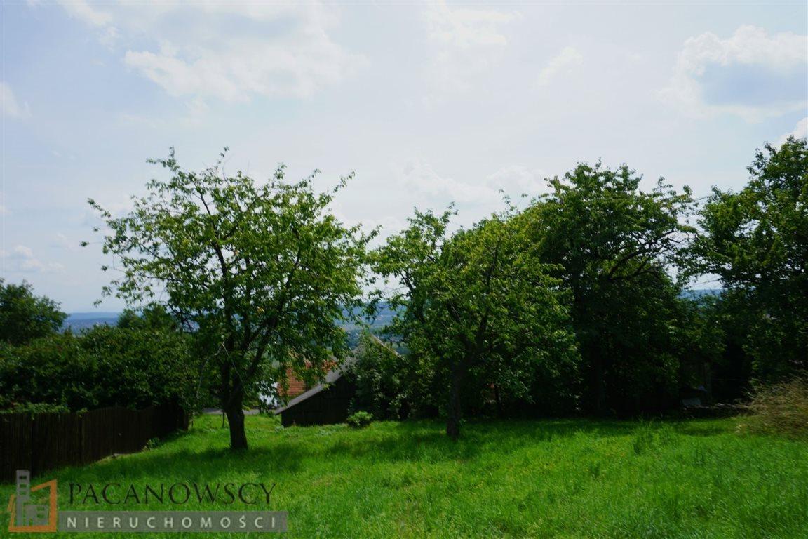 Działka budowlana na sprzedaż Karniowice  10000m2 Foto 5