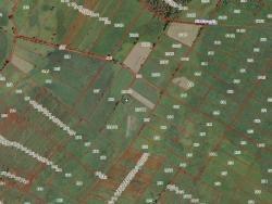 Działka siedliskowa na sprzedaż Okrasin  3600m2 Foto 5