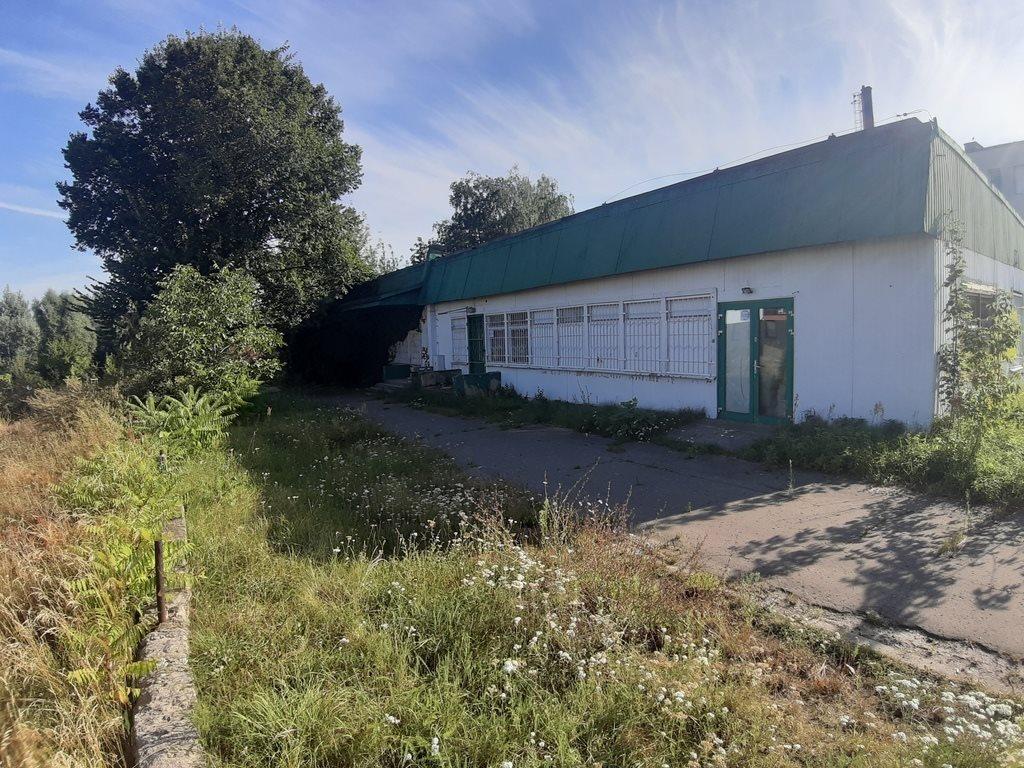 Lokal użytkowy na wynajem Gniezno  380m2 Foto 3