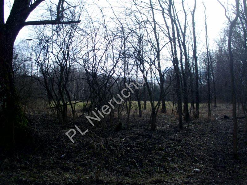 Działka rolna na sprzedaż Mszczonów  20000m2 Foto 6
