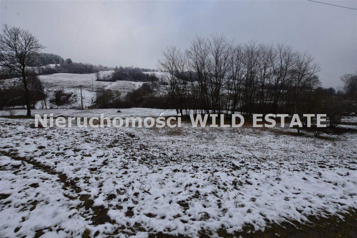 Działka rolna na sprzedaż Paszowa  4002m2 Foto 6