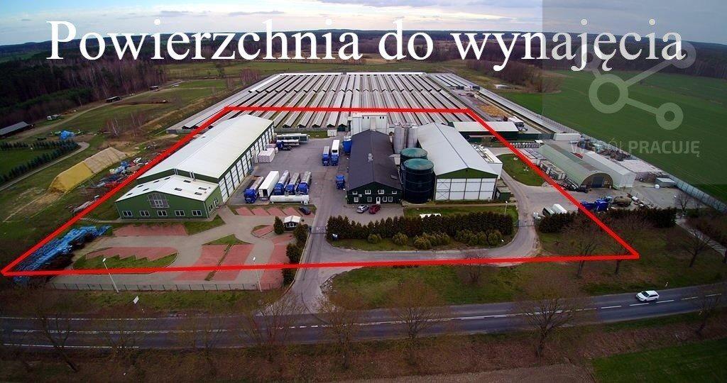 Lokal użytkowy na wynajem Gorzów Wielkopolski, okolice  1940m2 Foto 1