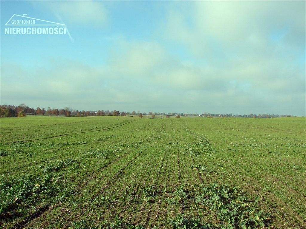 Działka rolna na sprzedaż Małdyty, ul. Ostródzka  134077m2 Foto 8