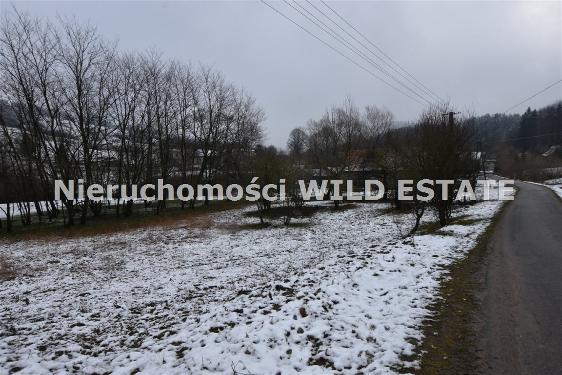 Działka rolna na sprzedaż Paszowa  4002m2 Foto 4