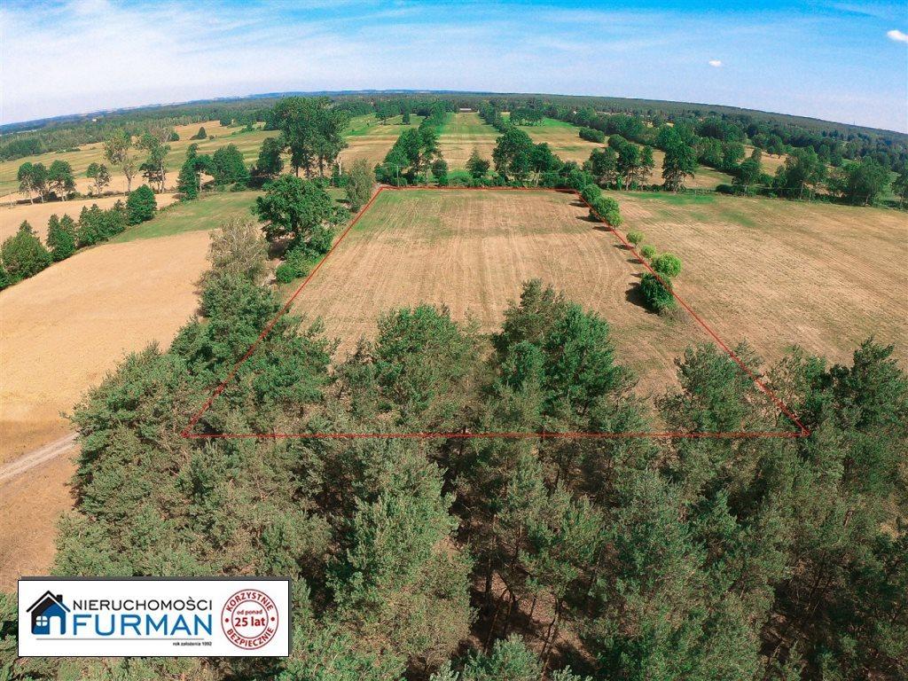 Działka siedliskowa na sprzedaż Ługi Ujskie  11499m2 Foto 1