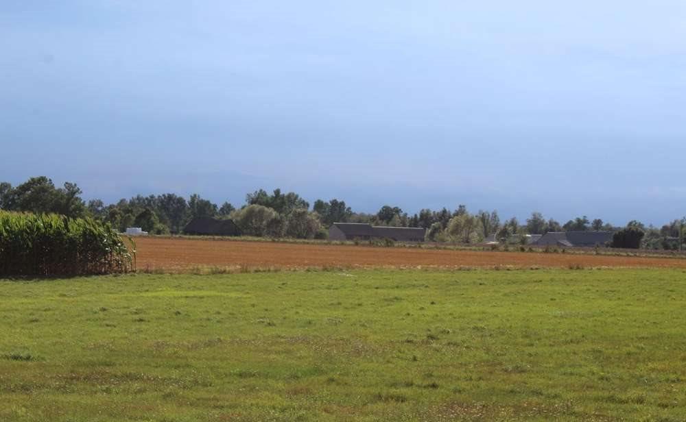 Działka rolna na sprzedaż Malesze  164100m2 Foto 5