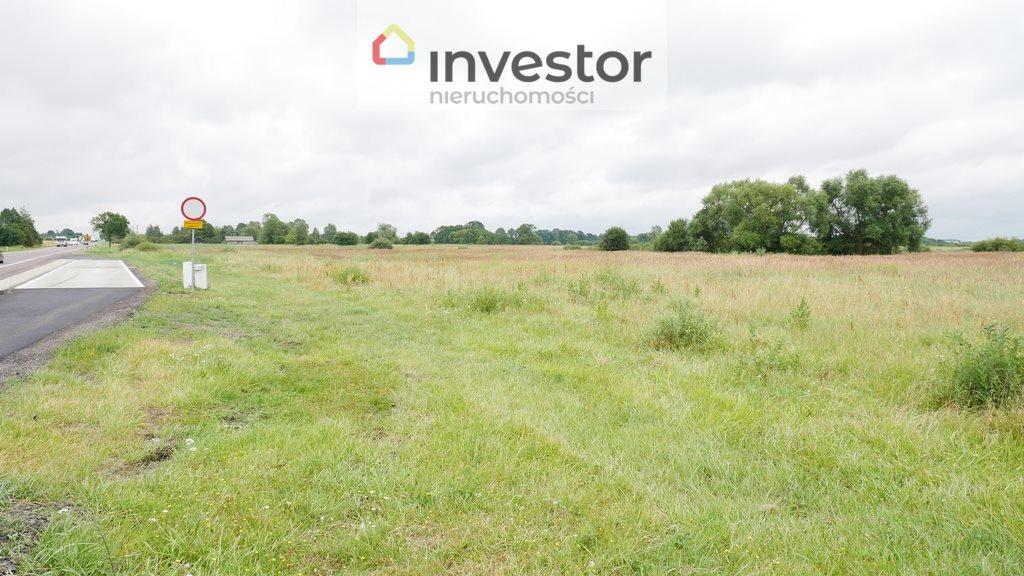 Działka inwestycyjna na sprzedaż Nowe Chojno  10811m2 Foto 4