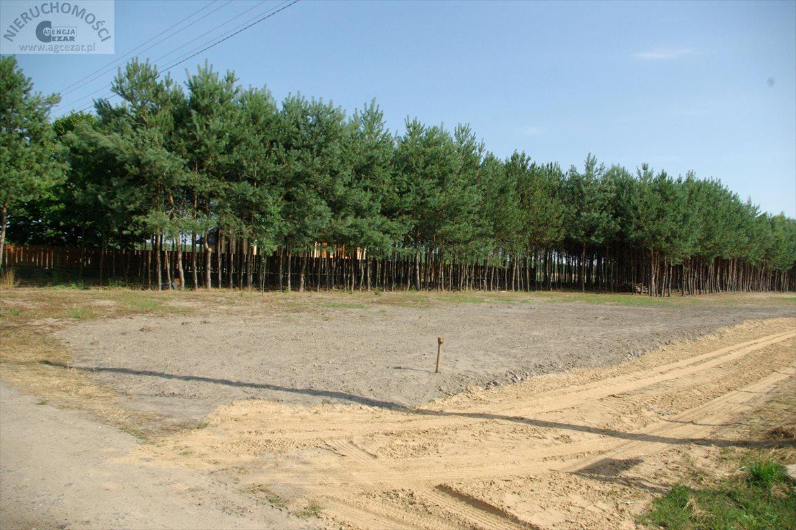 Działka budowlana na sprzedaż Łaziska  1060m2 Foto 7