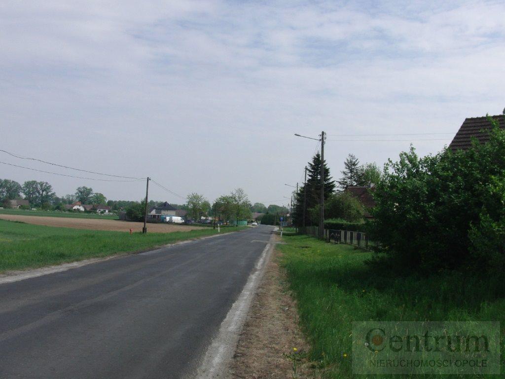 Działka rolna na sprzedaż Opole, Żerkowice  3180m2 Foto 2