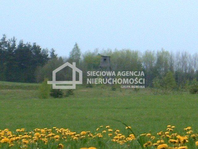 Działka budowlana na sprzedaż Donimierz  4980m2 Foto 6