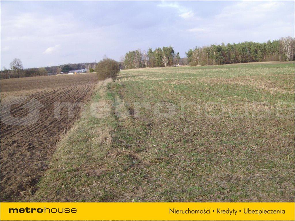Działka rolna na sprzedaż Chudolipie, Mszczonów  10500m2 Foto 2