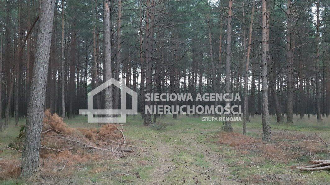 Działka rolna na sprzedaż Wdzydze Tucholskie  63500m2 Foto 1