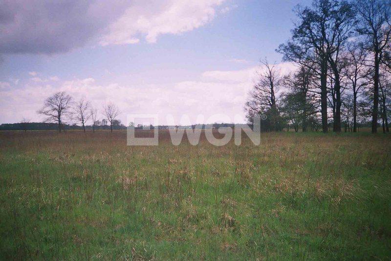 Działka rolna na sprzedaż Uraz, Uraz  66000m2 Foto 1