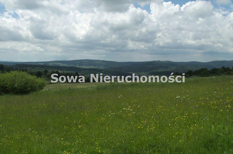 Działka budowlana na sprzedaż Sierpnica  1000m2 Foto 9