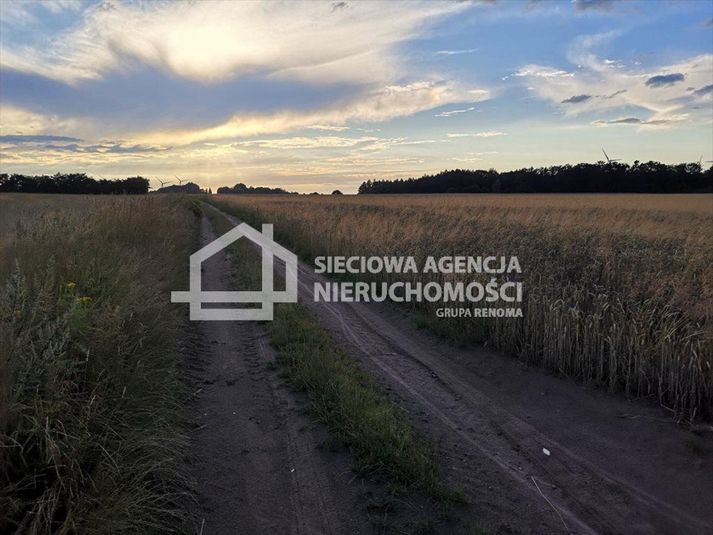 Działka rolna na sprzedaż Białogarda  148300m2 Foto 8