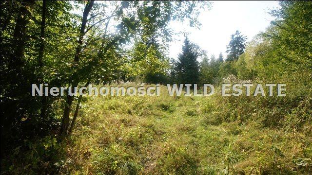 Działka rolna na sprzedaż Lesko, Huzele  88812m2 Foto 10