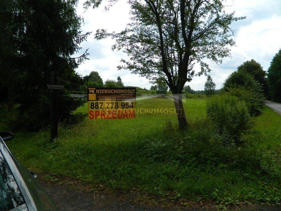 Działka budowlana na sprzedaż Włodowice  4121m2 Foto 6
