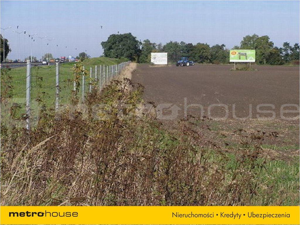 Działka rolna na sprzedaż Karwiany, Żórawina  34568m2 Foto 3