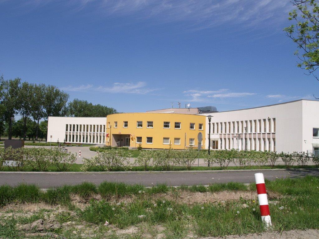 Działka budowlana na sprzedaż Rusiec  1000m2 Foto 3