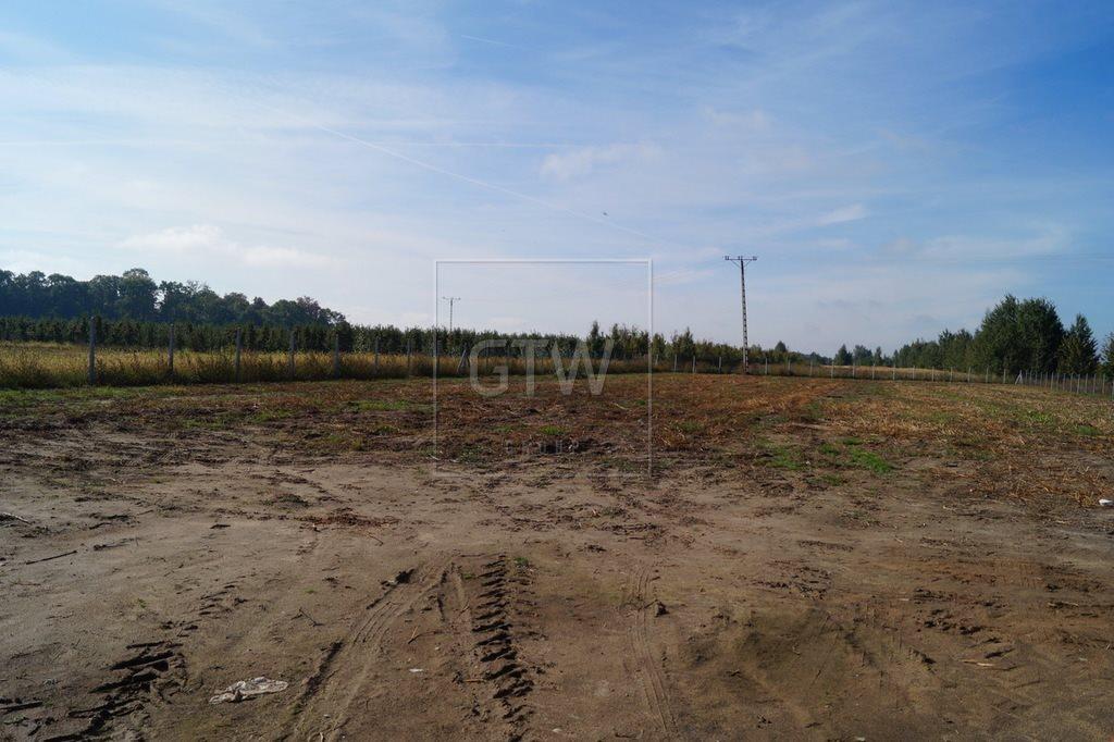 Działka rolna na sprzedaż Kobylin  3200m2 Foto 4