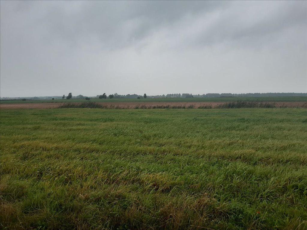 Działka rolna na sprzedaż Mielenko, Mielno  3020m2 Foto 6