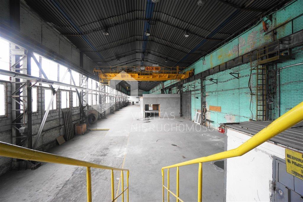 Lokal użytkowy na wynajem Sosnowiec  1240m2 Foto 1