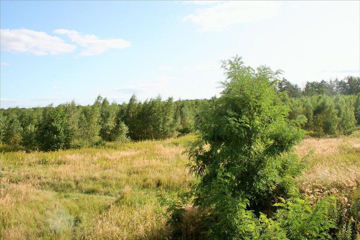 Działka rolna na sprzedaż Wilkszyn, Miękinia  2396m2 Foto 2