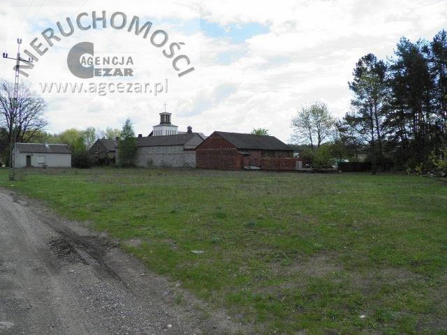 Działka budowlana na sprzedaż Grzebowilk  1500m2 Foto 4