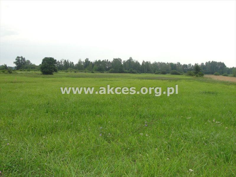 Działka rolna na sprzedaż Ostrowiec  40000m2 Foto 3