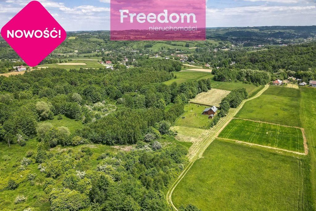 Działka rolna na sprzedaż Nowy Borek  4500m2 Foto 6