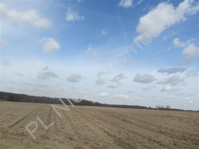 Działka rolna na sprzedaż Transbór  11200m2 Foto 1
