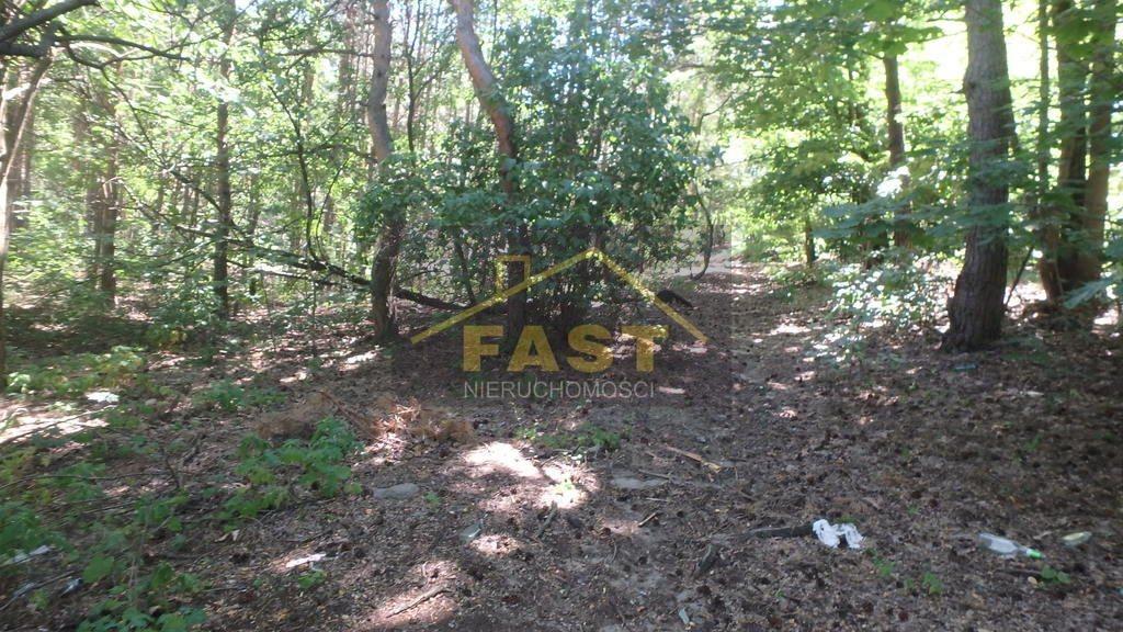 Działka leśna na sprzedaż Otwock  1262m2 Foto 5
