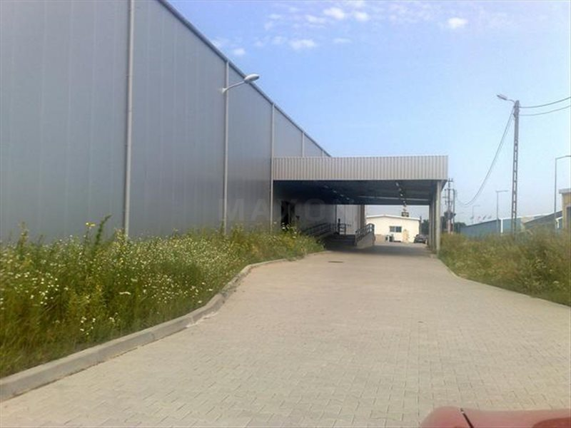 Lokal użytkowy na sprzedaż Sadowa, ul. Kolejowa  4765m2 Foto 7