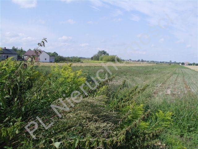 Działka rolna na sprzedaż Milęcin  15762m2 Foto 2