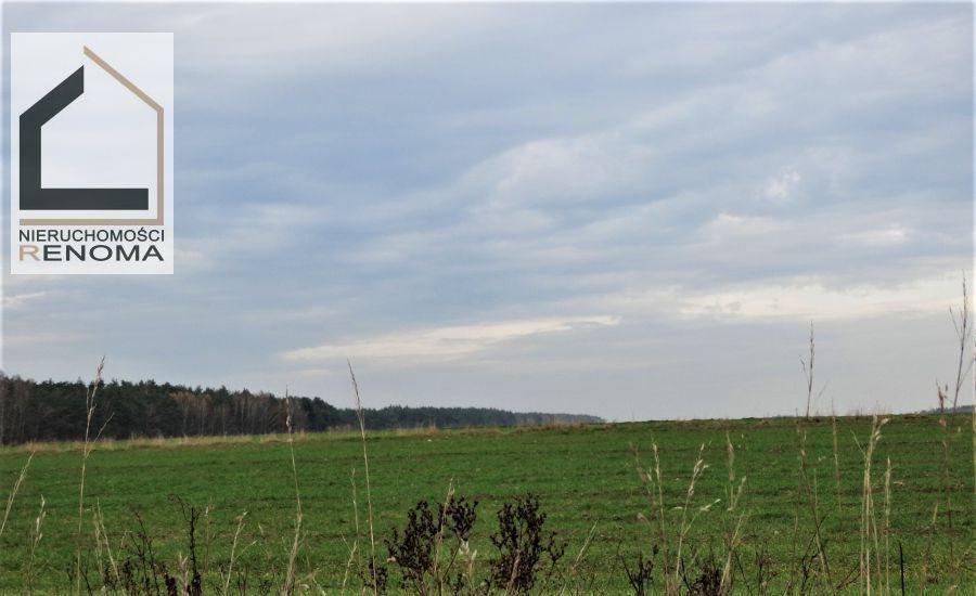 Działka rolna na sprzedaż Rościnno, , Rościnno, Skoki, Wągrowiec, Poznań  40982m2 Foto 1