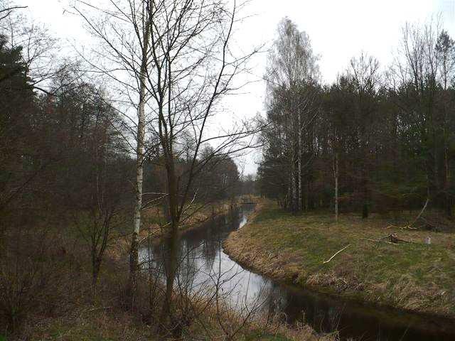 Działka rolna na sprzedaż Roztoka  31900m2 Foto 4