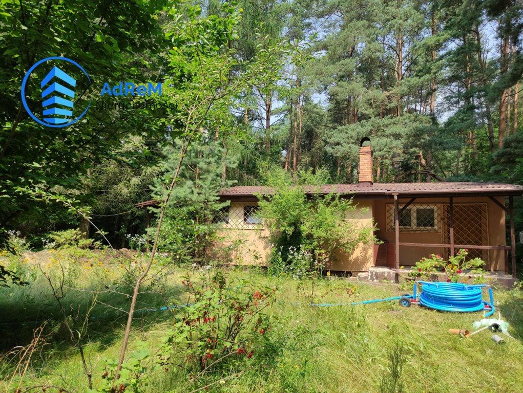 Działka leśna na sprzedaż Korzeniówka, Rysia  2356m2 Foto 2